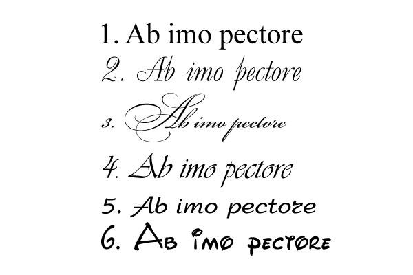 красивые на латыни с переводом пролена полипропилена лучше